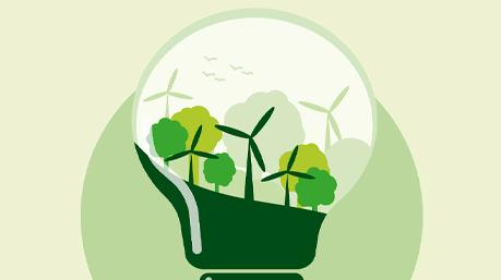 Energia renovável: por que é tão importante?