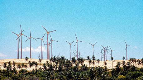 Energia eólica: conheça o processo
