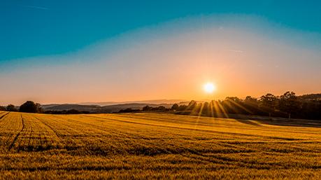 Energia Solar: 4 fatores que impactam na geração